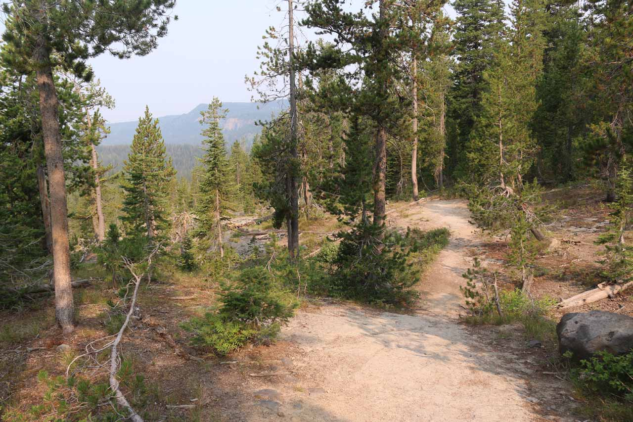 The Mountain Ash Creek Trail then began a pretty lengthy 600ft descent towards Proposition Creek