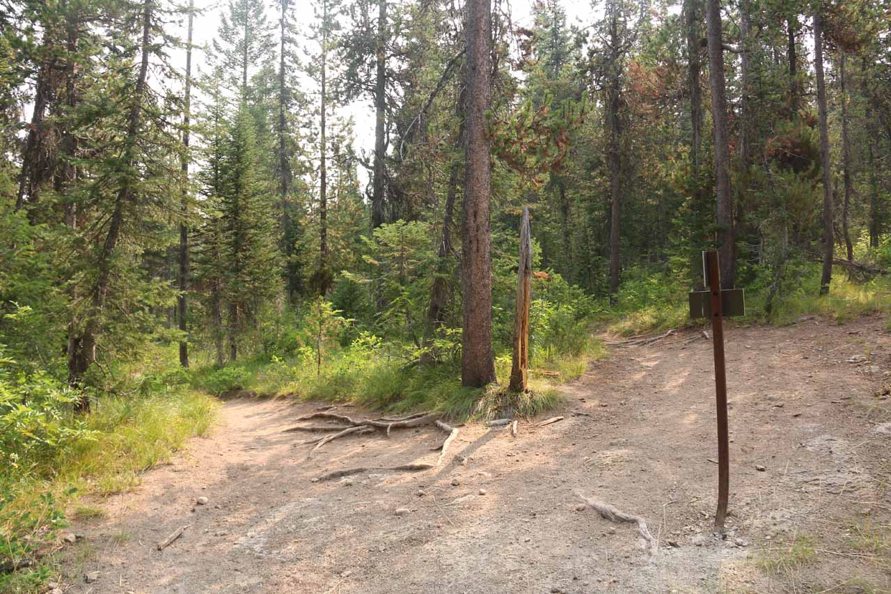 At the very bottom of the descent was this trail junction with the Union Falls Trail