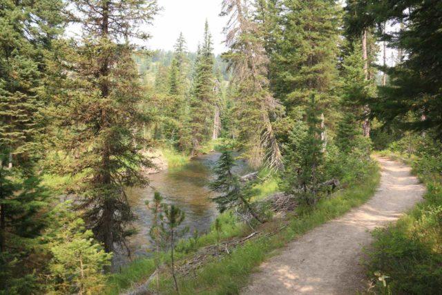 Union_Falls_092_08122017 - Context of the Union Falls Trail following upstream alongside the fairly sizable Mountain Ash Creek