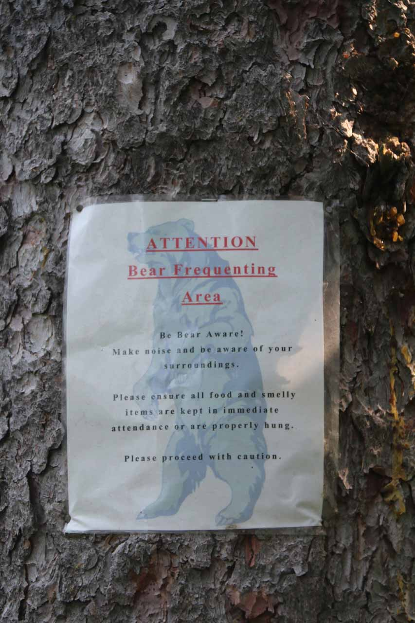 This ominous sign warned of the likelihood of encountering bear, further reinforcing the need to be aware of the surroundings and make as much noise as possible