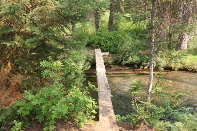 Union_Falls_096_08122017 - The bridge traversing Mountain Ash Creek