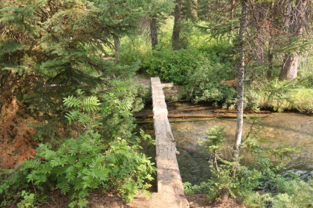 Union_Falls_096_08122017 - The bridge traversing Mountain Ash Creek