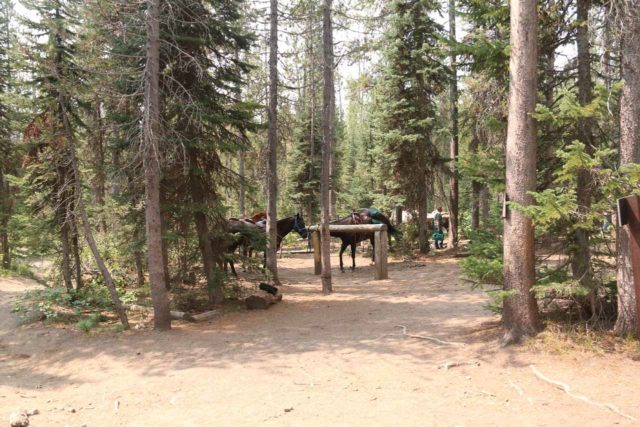 Union_Falls_187_08122017 - The corral at the fork between the Union Falls spur trail and the Scouts Pool Trail