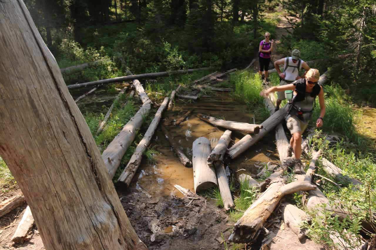 Looking back at a group of hikers going across the seasonal stream while balancing on the logs to stay dry