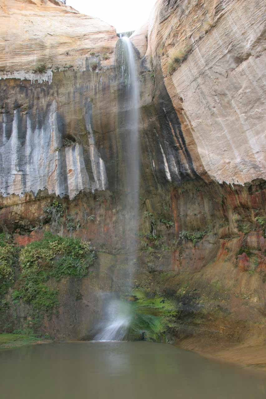 Checking out Upper Calf Creek Falls directly from across its plunge pool