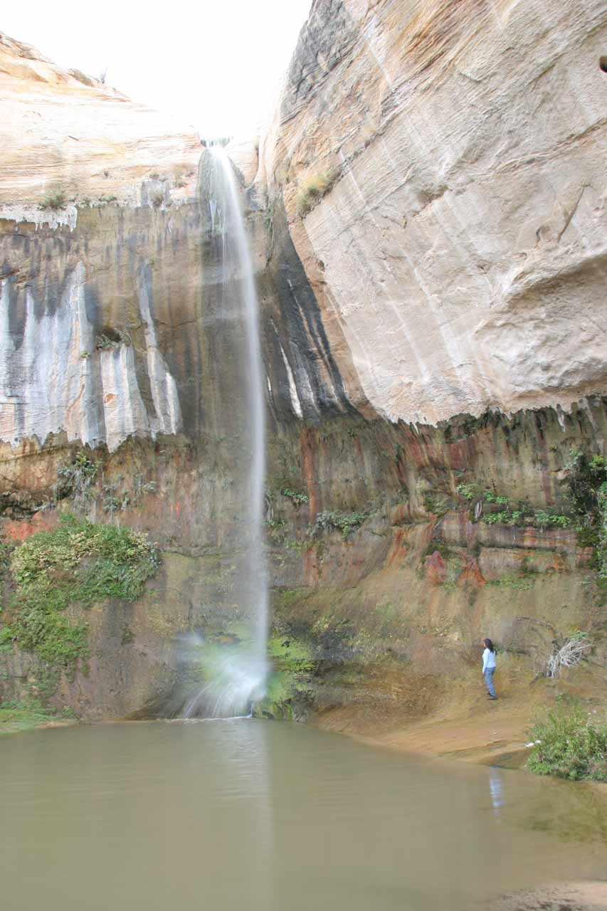 Mom checking out Upper Calf Creek Falls while providing a sense of scale