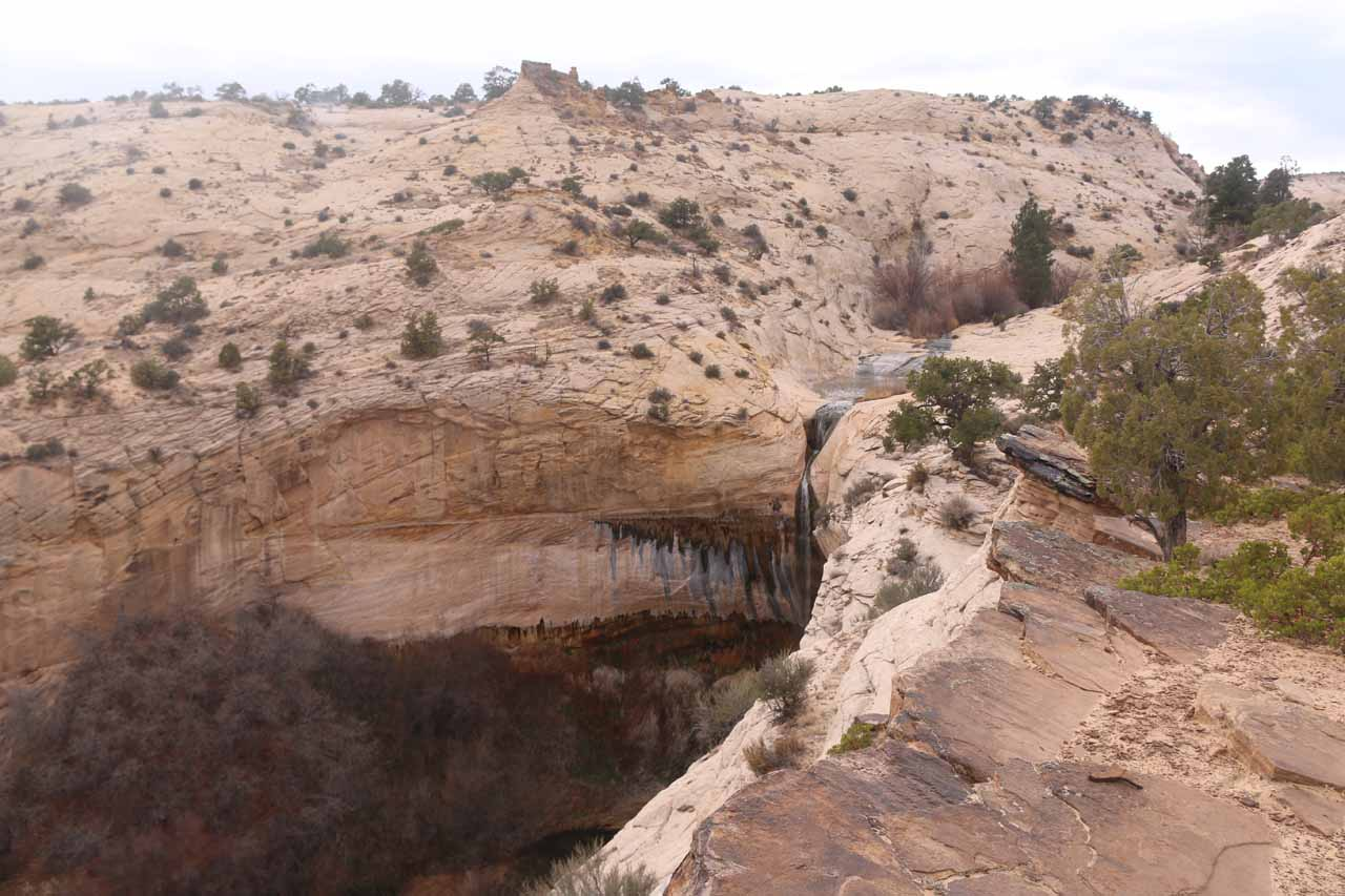This was perhaps the cleanest view of the top of Upper Calf Creek Falls that I could get from the canyon rim
