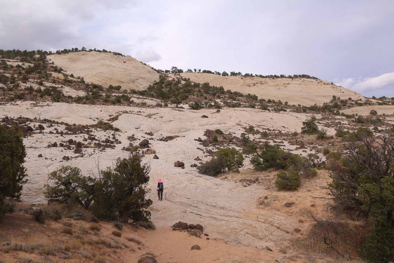 On the return hike, we were approaching the final brutal uphill stretch on the sandstone slickrock