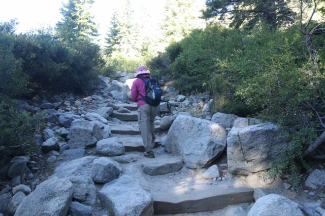 Upper_Eagle_Falls_017_06232016 - Mom on the initial ascent up to the trail junction for both the Eagle Loop Trail as well as the Eagle Falls Trail