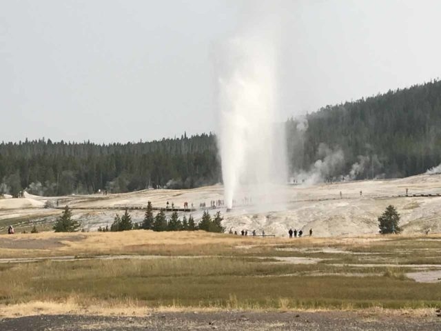 Upper_Geyser_Basin_015_iPhone_08112017 - Probably the most impressive of the geysers we managed to see erupting in the Old Faithful area was the Beehive Geyser, which was said to go off once or twice a day
