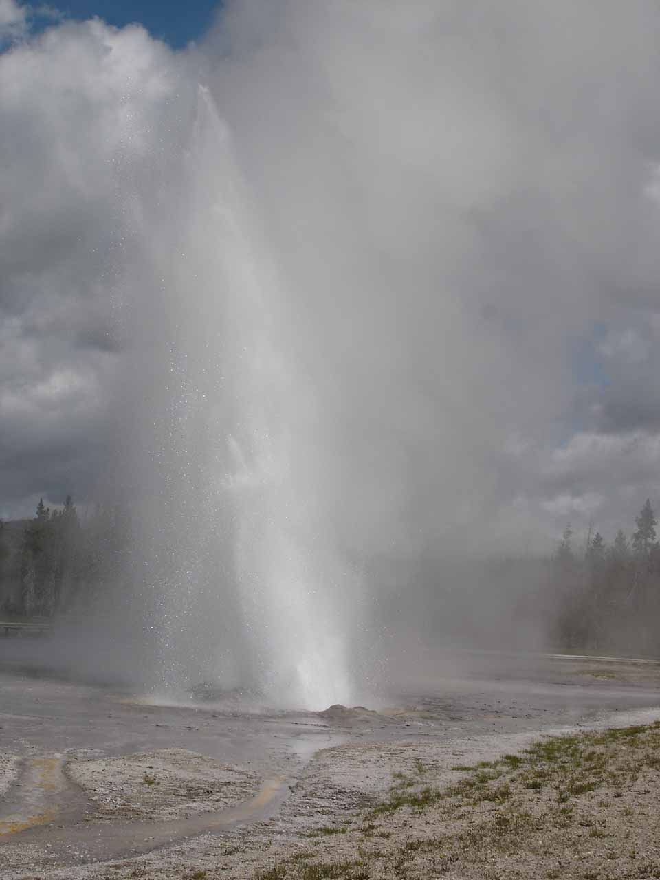 We also saw another predictable geyser in the Upper Geyser Basin called the Daisy Geyser