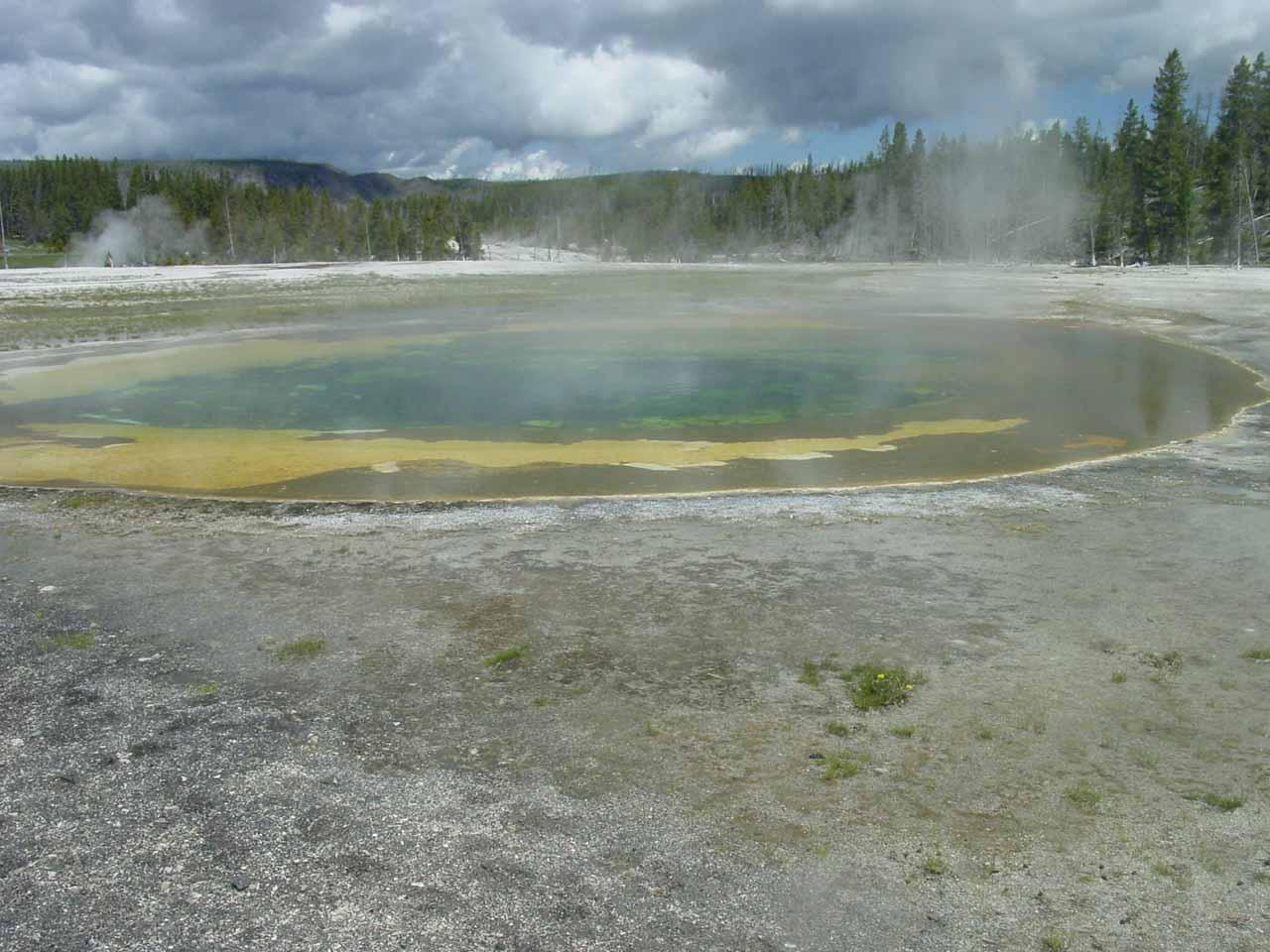 The Beauty Pool