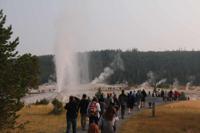 Upper_Geyser_Basin_17_047_08112017 - Further west of the West Thumb Geyser Basin was the Upper Geyser Basin and Old Faithful, where we happened to catch the impressive Beehive Geyser erupting during our 2017 visit