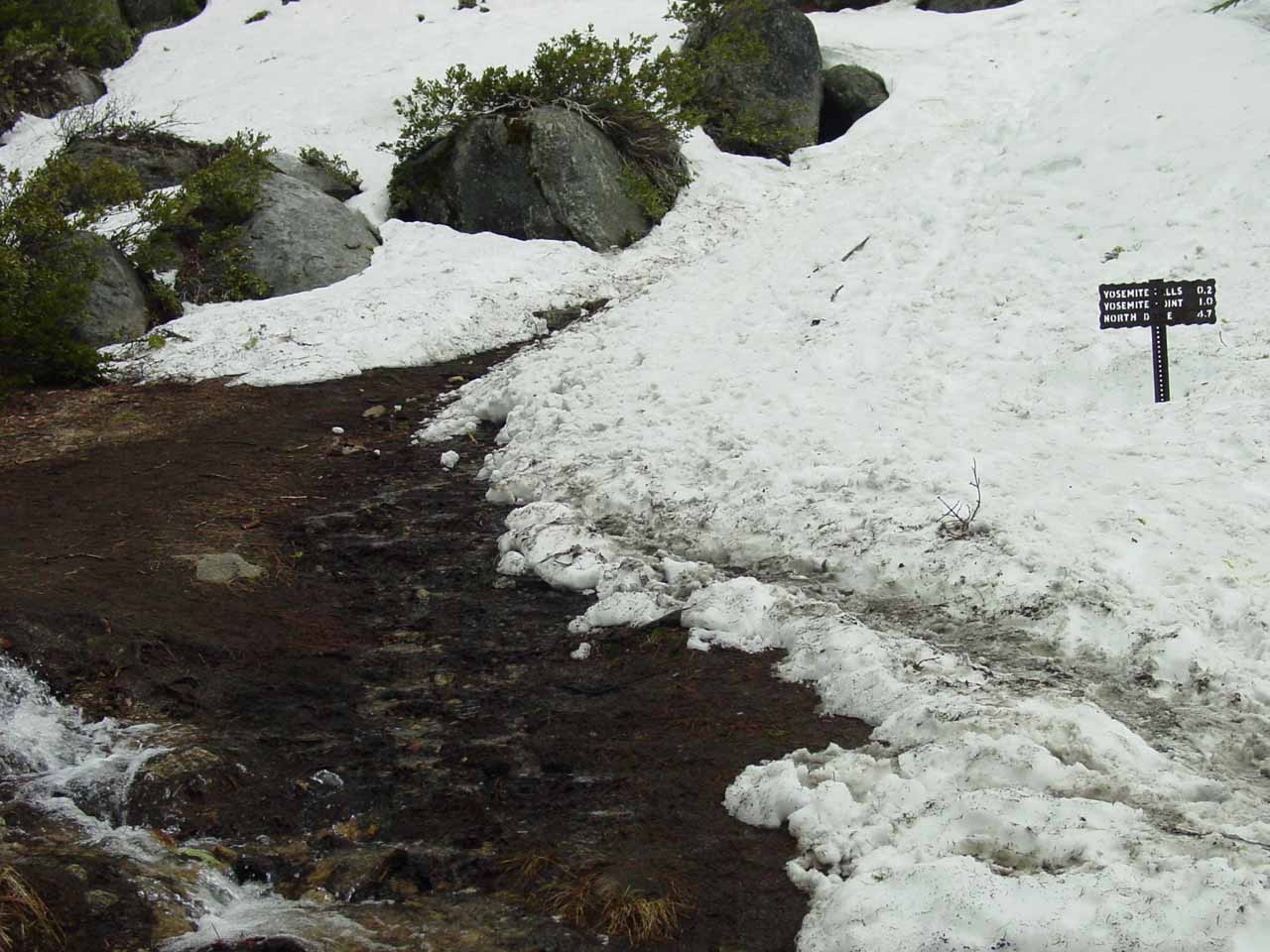 There was still snow on the Upper Yosemite Falls Trail in the high country in April 2005