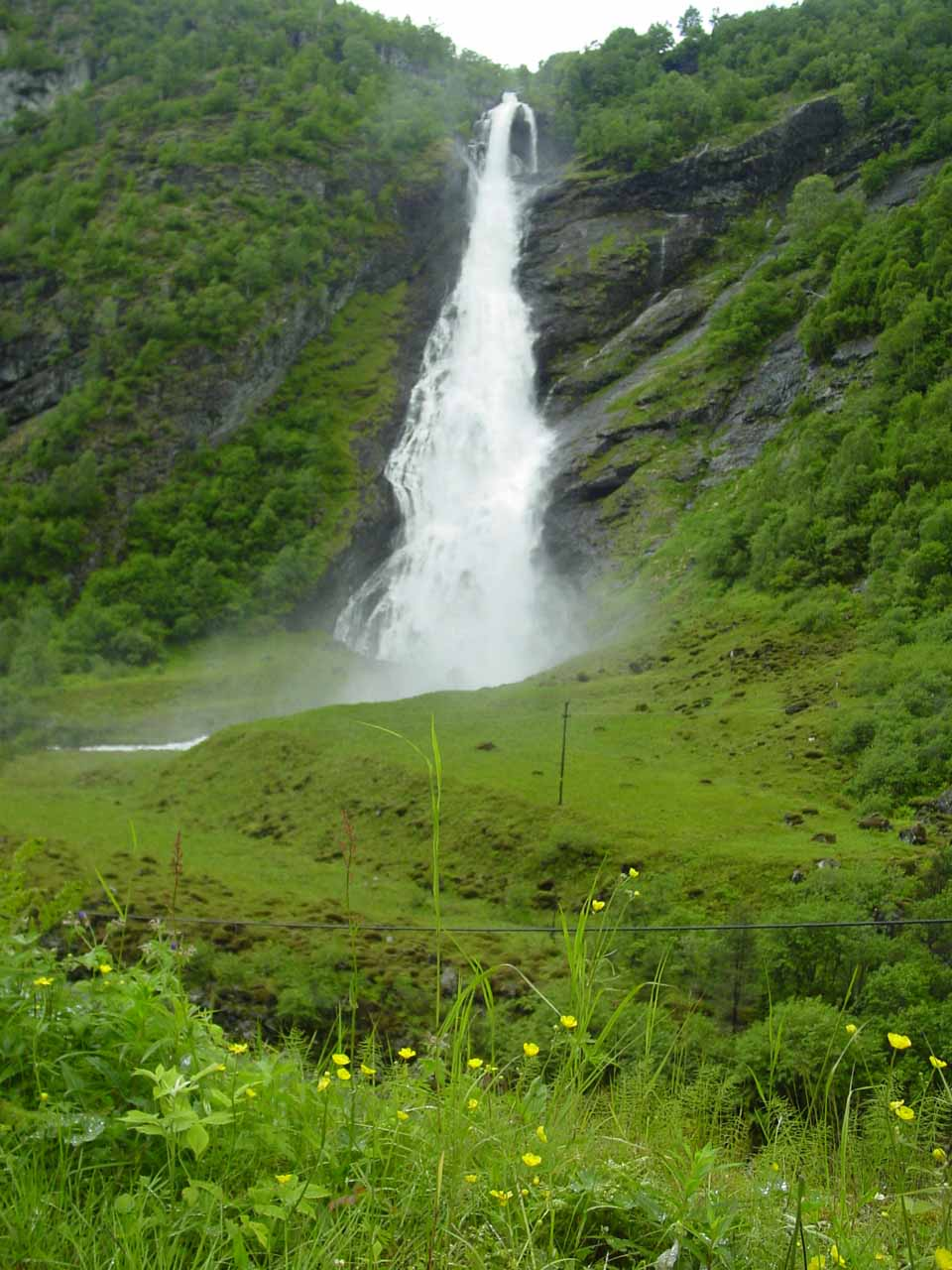 Direct view of Avdalsfossen with wildflowers blooming before us