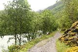 Utladalen_063_07212019 - The Utladalen Trail following alongside the Utla River on the way to Vetti
