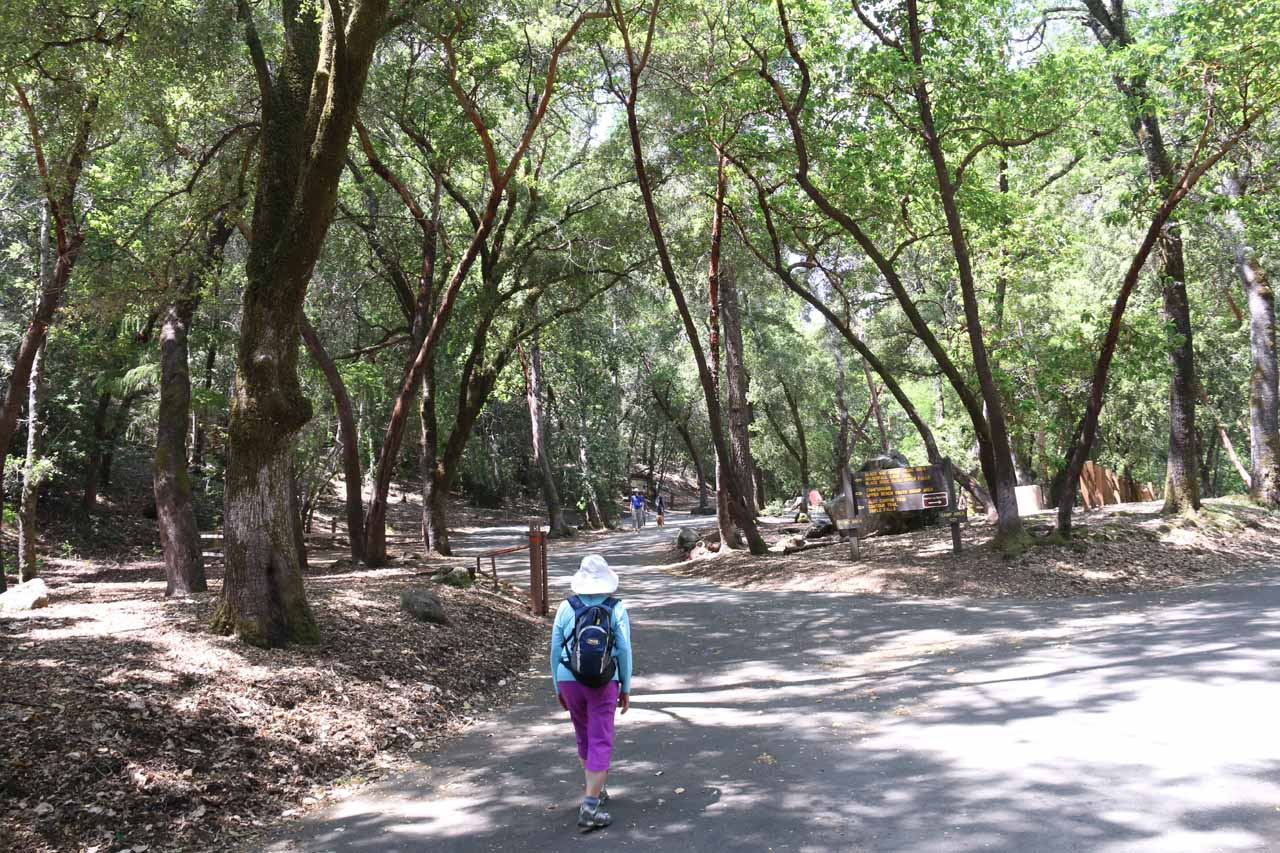 Mom walking through the picnic area by the car park for Uvas Canyon County Park