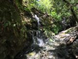 Uvas_Canyon_010_mom_05192016 - Closer look at Black Rock Falls as mom had scrambled almost right up to its base