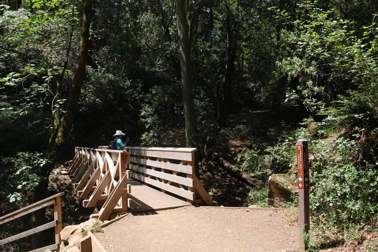 This was the footbridge fronting Granuja Falls