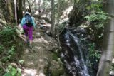 Uvas_Canyon_039_05192016 - Mom hiking alongside this side cascade that ultimately led us up to Black Rock Falls