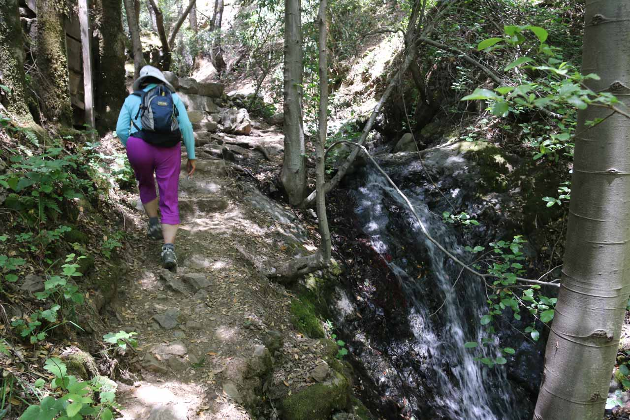 Mom hiking alongside this side cascade that ultimately led us up to Black Rock Falls