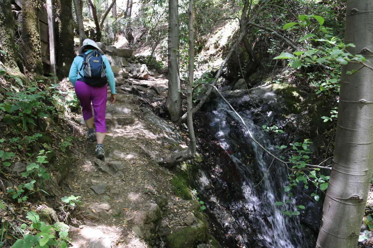 Mom hiking alongside this side cascade that ultimately led us up to Black Rock Falls