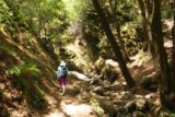 Uvas_Canyon_100_05192016 - Mom continuing the hike further upstream along Swanson Creek towards Basin Falls