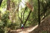 Uvas_Canyon_147_05192016 - Mom continuing along the Waterfall Loop on the creekside part of the trail
