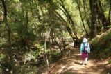 Uvas_Canyon_160_05192016 - Mom approaching a footbridge near the bottom of the Waterfalls Loop in Uvas Canyon County Park