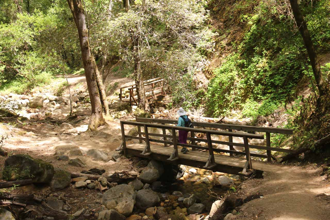 Mom crossing a pair of footbridges on the way to the end of the Waterfalls Loop Trail