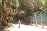Uvas_Canyon_194_05192016 - Mom walking by some fencing for some kind of infrastructure alongside the steep Alec Canyon Trail