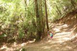 Uvas_Canyon_224_05192016 - This was the trail junction where we kept right to go towards Triple Falls
