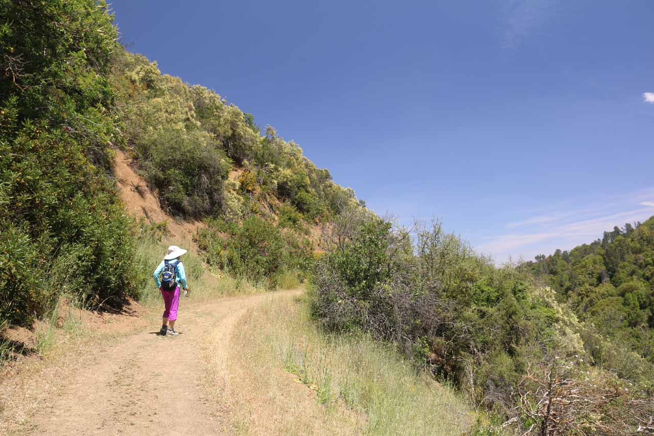 This initial ascent back to Manzanita Point was the only uphill stretch before it was all downhill back to the car park