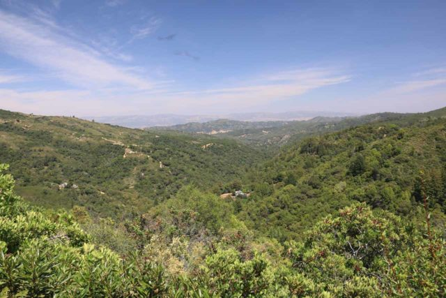 Uvas_Canyon_247_05192016 - Context of the Manzanita Overlook on the way up to the Triple Falls as we climbed towards Alec Canyon