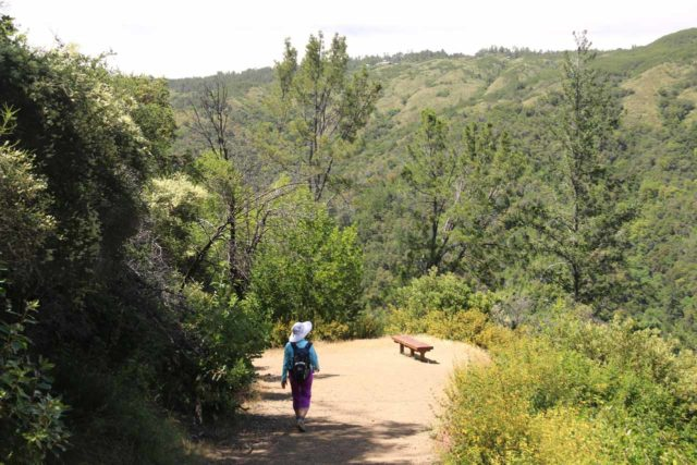 Uvas_Canyon_251_05192016 - Mom descending towards one of the overlooks on the Alec Canyon Trail as we were making our way back to the Uvas Canyon County Park trailhead