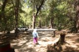 Uvas_Canyon_252_05192016