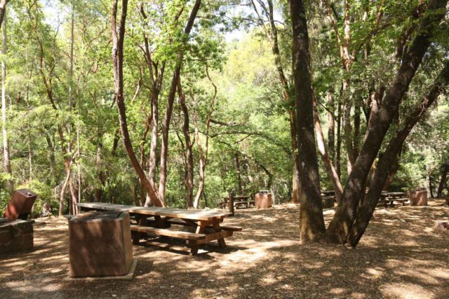 Uvas_Canyon_253_05192016 - The picnic area near the Uvas Canyon County Park Trailhead as we headed further downstream along Swanson Creek for the Lower Falls