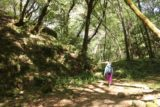 Uvas_Canyon_256_05192016 - Mom walking by a noticeably more open part of the trail leading to Lower Falls