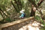 Uvas_Canyon_259_05192016 - Mom descending towards the base of Lower Falls down these steps