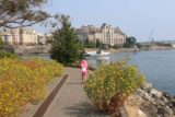 Victoria_BC_413_08032017 - Tahia walking by some bushes with flowers growing on them while on the David Foster Walkway