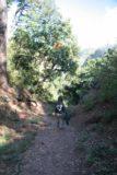 Victoria_Falls_175_05252008 - Descending down the Boiling Pots trail