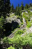 Vidae_Falls_001_06282021 - Portrait view of the full extent of Vidae Falls