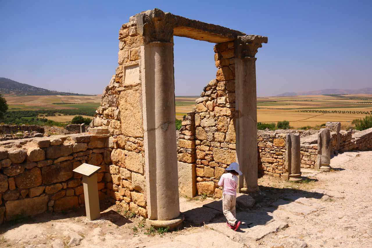 Tahia going under a doorway amongst the ruins of Volubilis