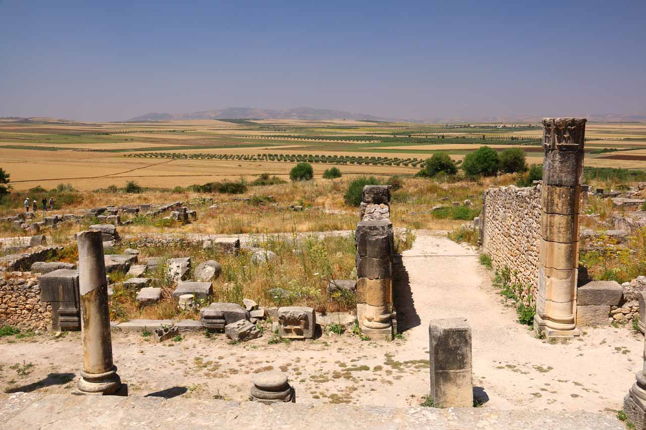 Looking out towards golden plains from Volubilis