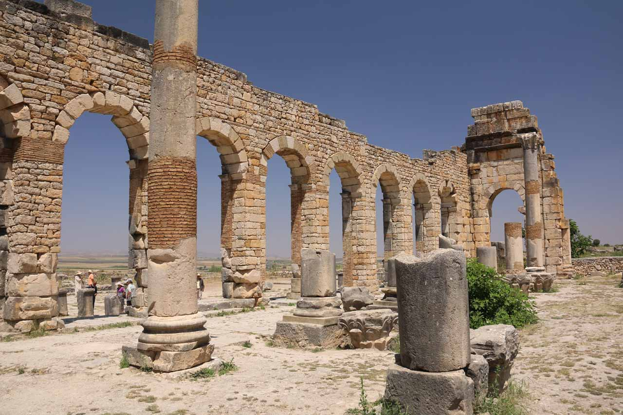 Within the basilica of Volubilis