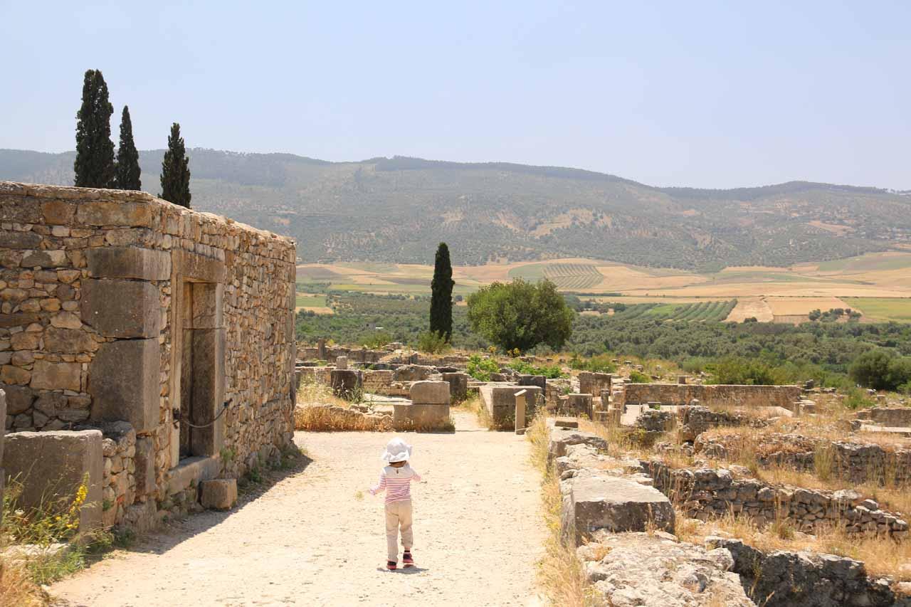 Tahia wandering amongst the ruins of Volubilis