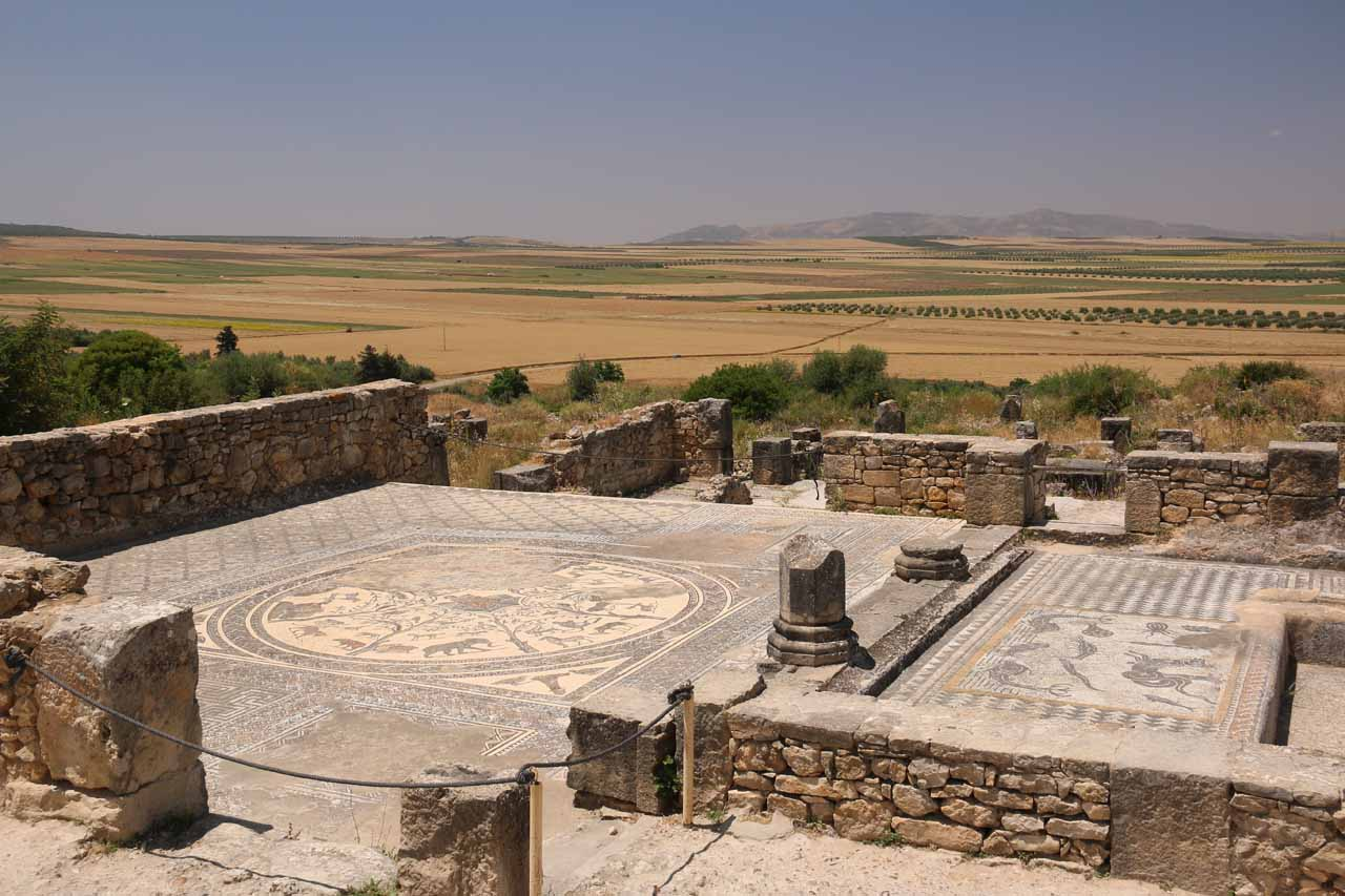 Another look at the impressive mosaics amidst the ruins of Volubilis