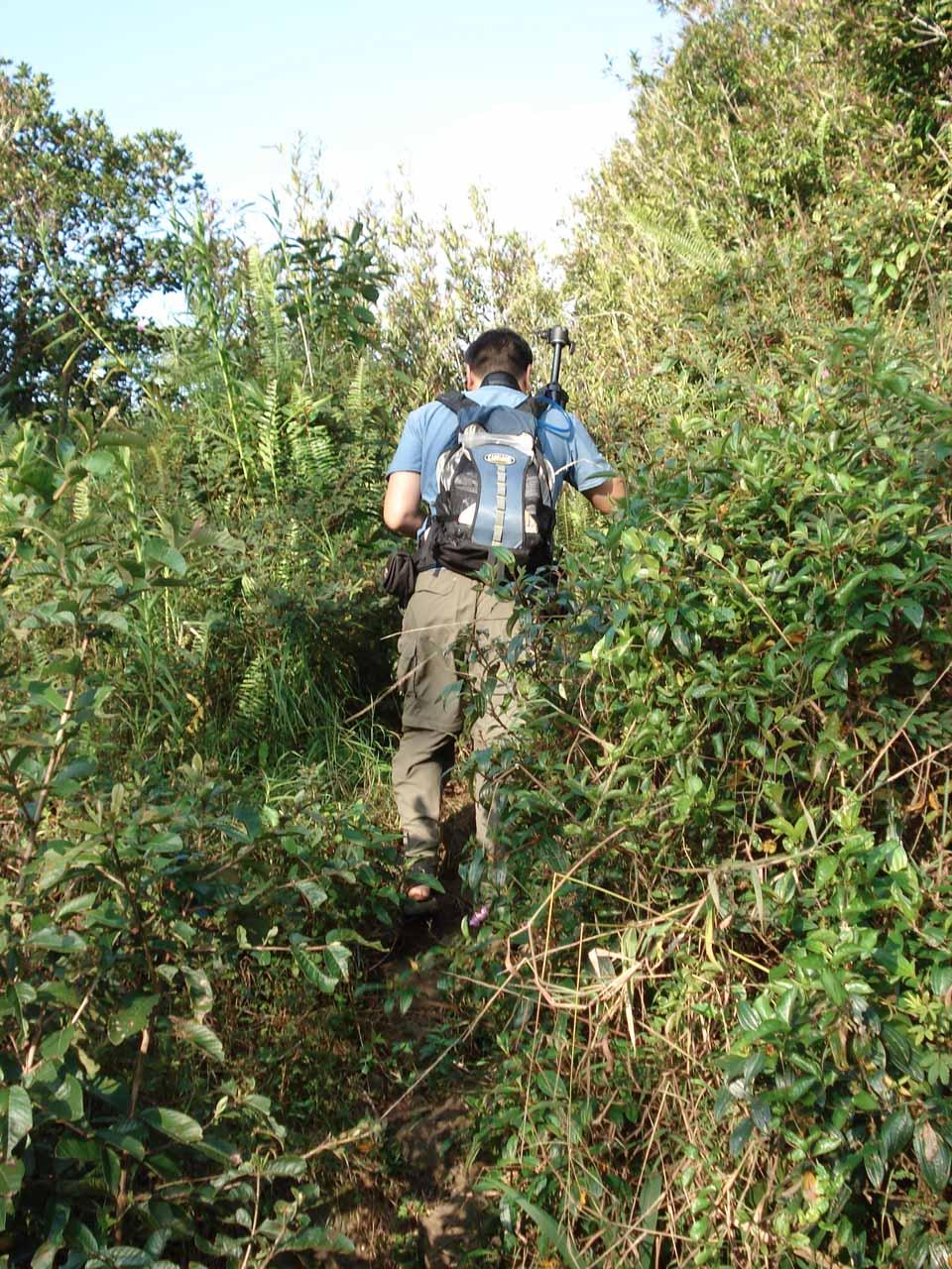 Me scrambling through the overgrowth