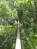 Waihee_Valley_006_09022003 - The second swinging bridge