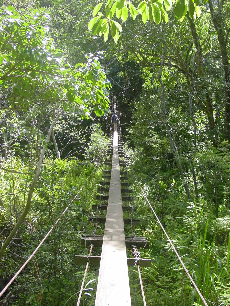 The second and much longer swinging bridge